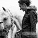 De Paardenbloem