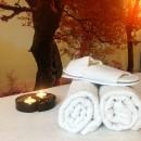 De Wilde Roos - Praktijk voor Energetische massages