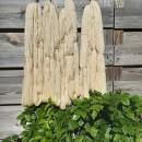 AMB8 Design