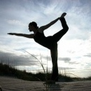 Yoga Federatie van de Nederlandstaligen in Belgie