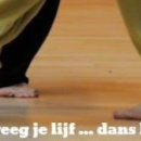 Danshetleven